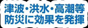 津波・洪水・高潮等 防災に効果を発揮