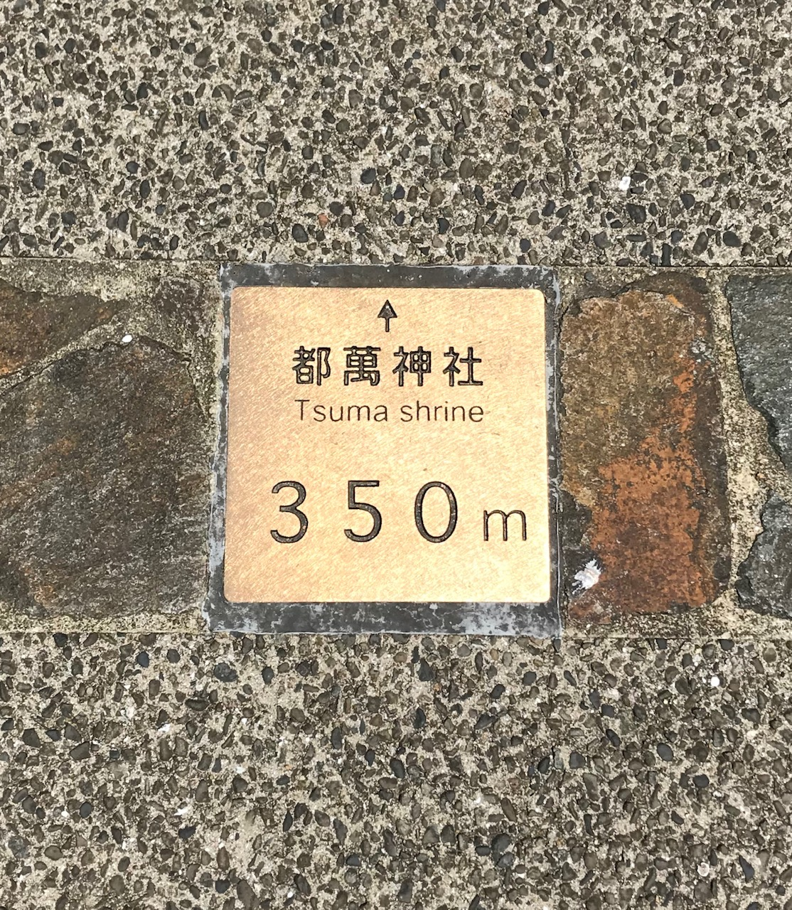 桜川遊歩道路面標示版
